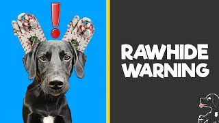 Dog Rawhide Warning | Buddy Bubbles & Plans for 2019