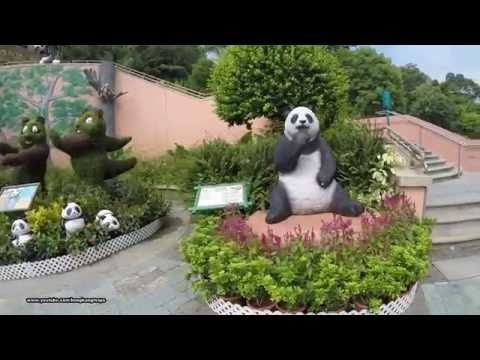 【Hong Kong Day Walk】 hong kong ocean park walk
