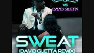 Snoop Dogg - I just wanna make you sweat (David Guetta Remix)