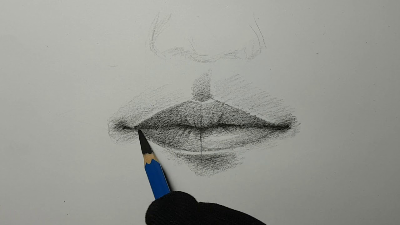 mouth drawing การวาดปาก