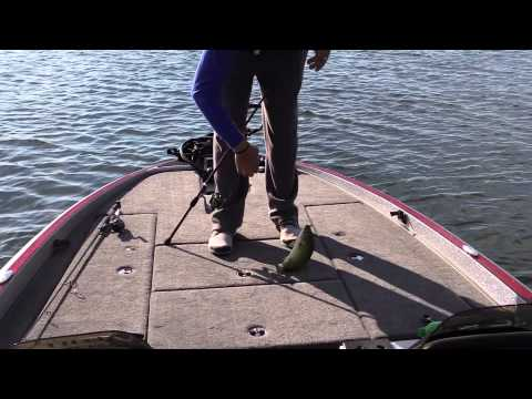Full download fall northern michigan smallmouth bass for Mullett lake fishing
