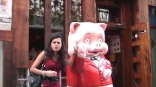 Piggy - Zig Zag Wanderer