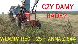 230# Życie zwyczajnego rolnika - Kopanie ziemniaków T-25 z kombajnem Z-644