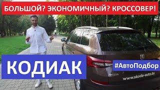 Шкода Кодиак бензин или дизель российская сборка тест-драйв, отзывы, обзор Автоподбор