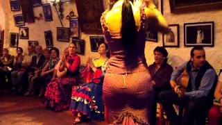 flamenco dance by spanish gypsies part 2