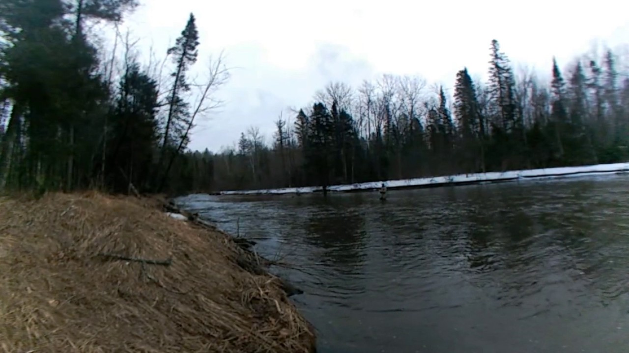 360 video steelhead opener on wisconsin 39 s brule river for Brule river fishing report