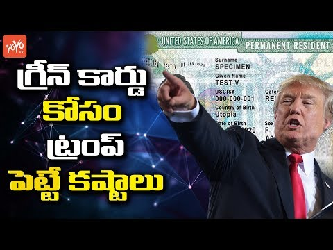 USA Donald Trump New Rules Announced For Green card and Immigration | H1B Visa | YOYO TV Channel