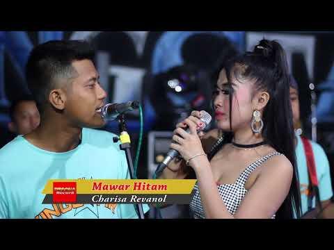 Mawar Hitam harisa Reavanol New King Star Live Ngiyono Japah Terbaru