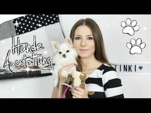 XXL HUNDEZUBEHÖR HAUL + VERLOSUNG 🐶 | Hundedecke, Spielzeug, Leinen, Geschirr, Pflege