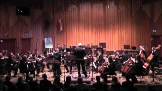 W.A. Mozart (KV313) - Rondo: Tempo di Menuetto - Koncert fletowy G-dur
