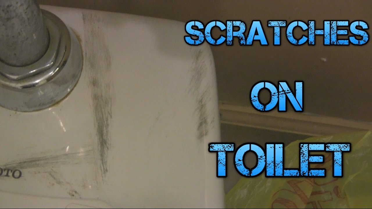 Scratches On My Toilet - YouTube