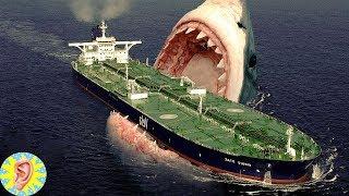 Dünyanın En Büyük Köpekbalığı MEGALODON ve 5 Korkunç GERÇEK