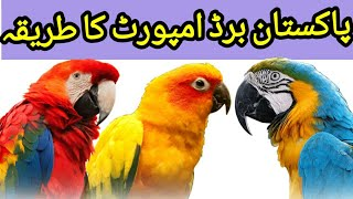 Import of Birds in Pakistan l Import Procedure of Birds in Pakistan l Imported Birds for Sale