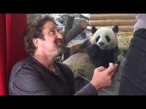 Gerard Butler and the Zoo Berlin