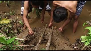 Primitive technology bamboo fish trap