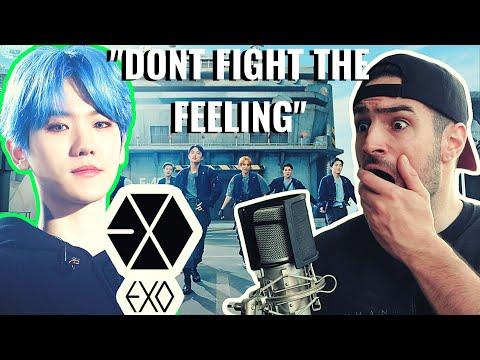 EXO 엑소 'Don't fight the feeling' MV║REACTION!