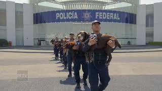 Jubilación de Oficiales caninos de la Policía Federal de México