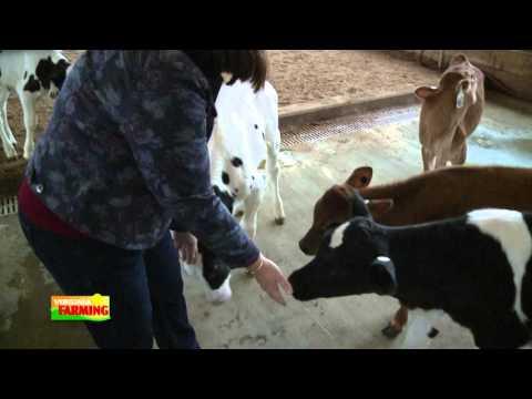 Virginia Farming: VT Dairy Science Complex