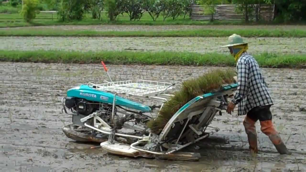 RICE PLANTING MACHINE PDF DOWNLOAD