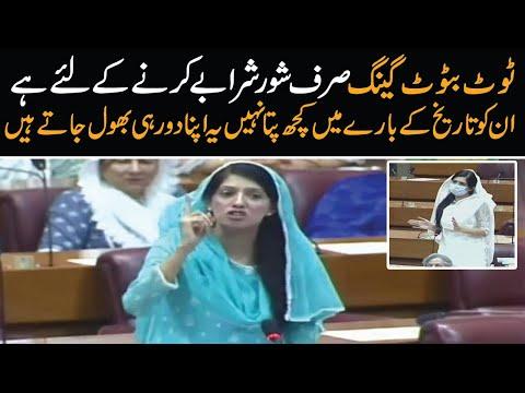 PML N is 'Toot batoot' gang | Aliya Hamza best National Assembly speech