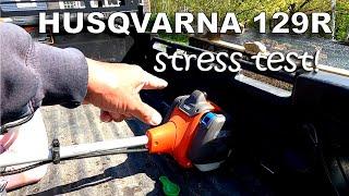 Husqvarna 129R Brushcutter 'Stress Test' Results 😮