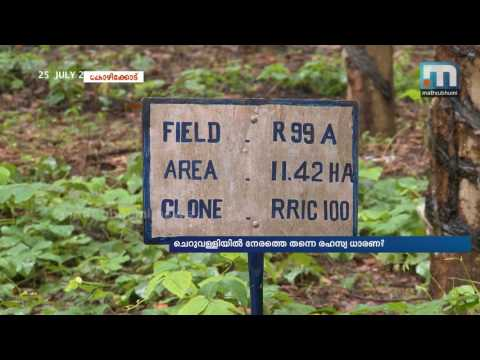 Secret understanding in Cheruvally estate?| Mathrubhumi News