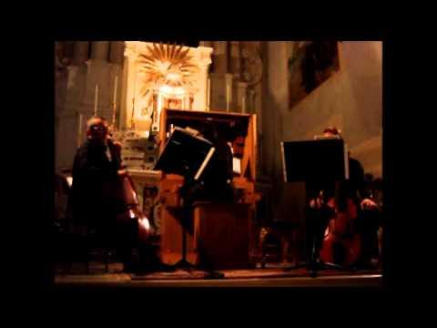 Heinrich Ignaz Franz Biber (Attr.): Sonatina (Roberto Gini, LIVE 2006)