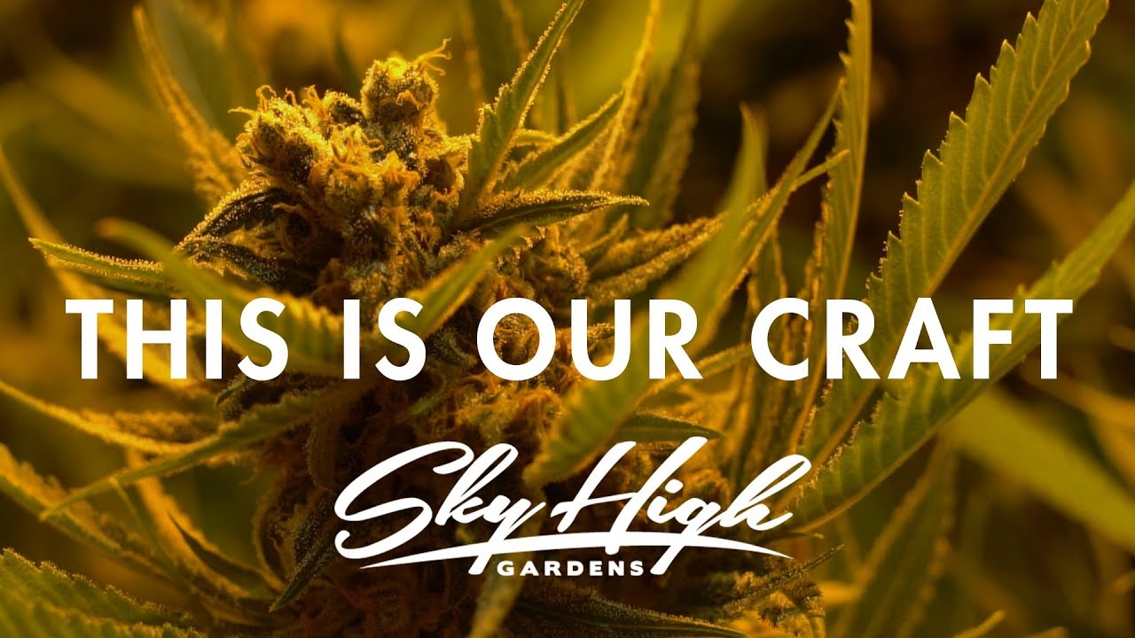 This Is Our Craft | Sky High Gardens - YouTube