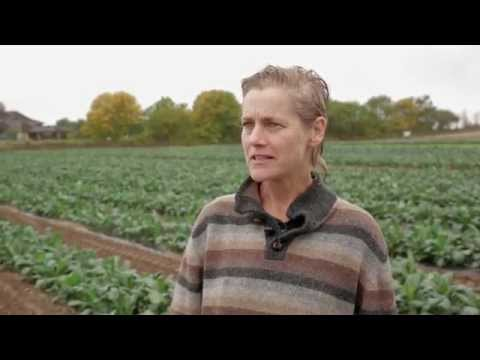 Ask A Farmer: Why Label GMOs?