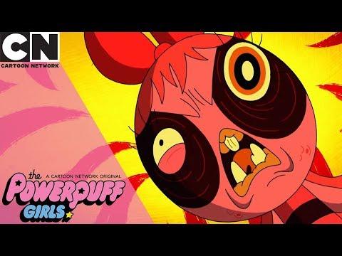 The Powerpuff Girls | Buttercup is the Smartest | Cartoon Network