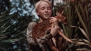The Yearling - Original Theatrical Trailer