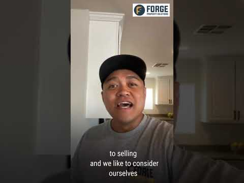 Welcome to Forge Property Solutions