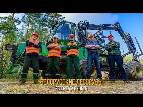 Работа вальщиком леса в России. Вакансии вальщик леса в