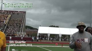 UAPB vs AAMU - 5th Quarter (2015)