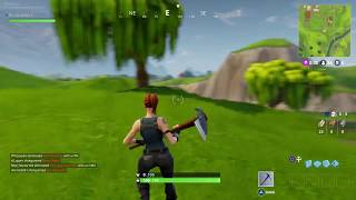 Fortnite, 1st experience... Very buggy?