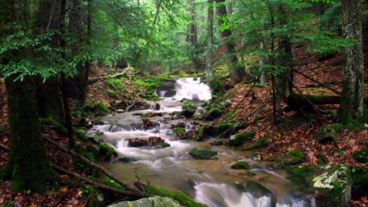 Run In A Stream