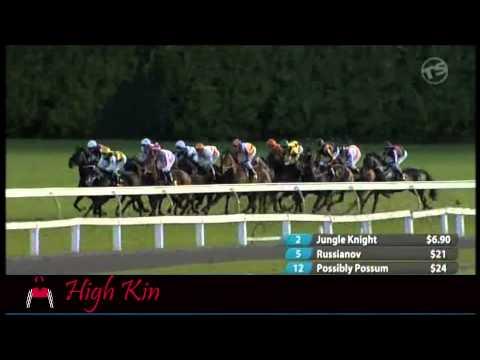 HighKin - 1st five starts for Greene Racing