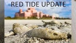 RED TIDE UPDATE (SW FLORIDA) || September 25, 2018