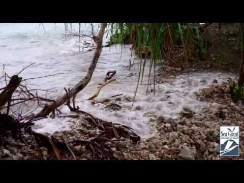 High Tide in Majuro, Marshall Islands