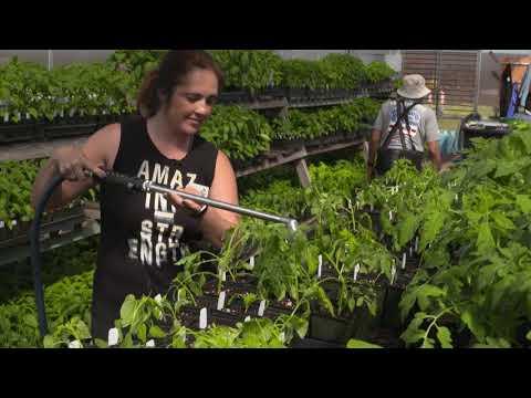 UC Master Gardeners of Santa Clara County Full Video