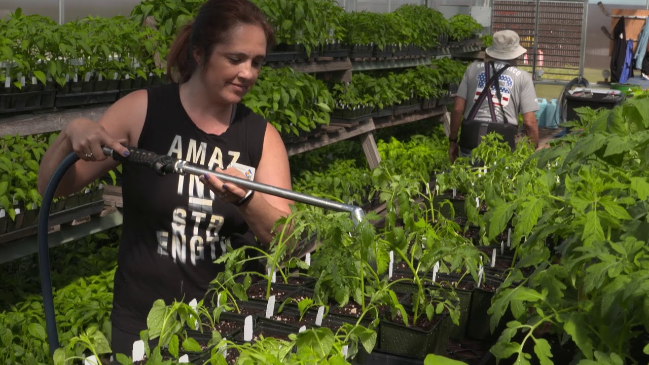 UC Master Gardeners Of Santa Clara County Full Video