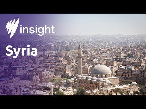 Insight: Syria