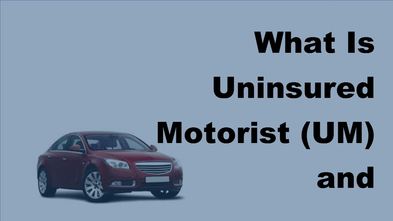 Car Insurance Uninsured Motorist Bodily Injury