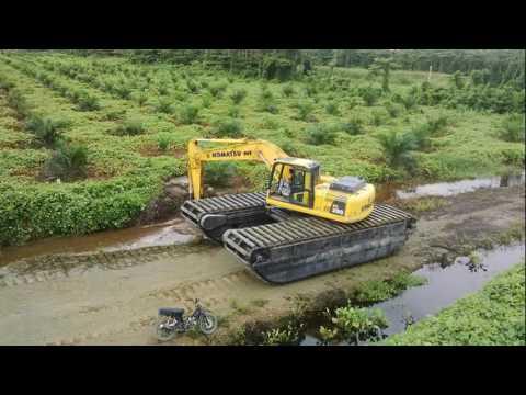 excavator kebun sawit buka lahan gambut rawa rawa perkebunan pertanian sawah