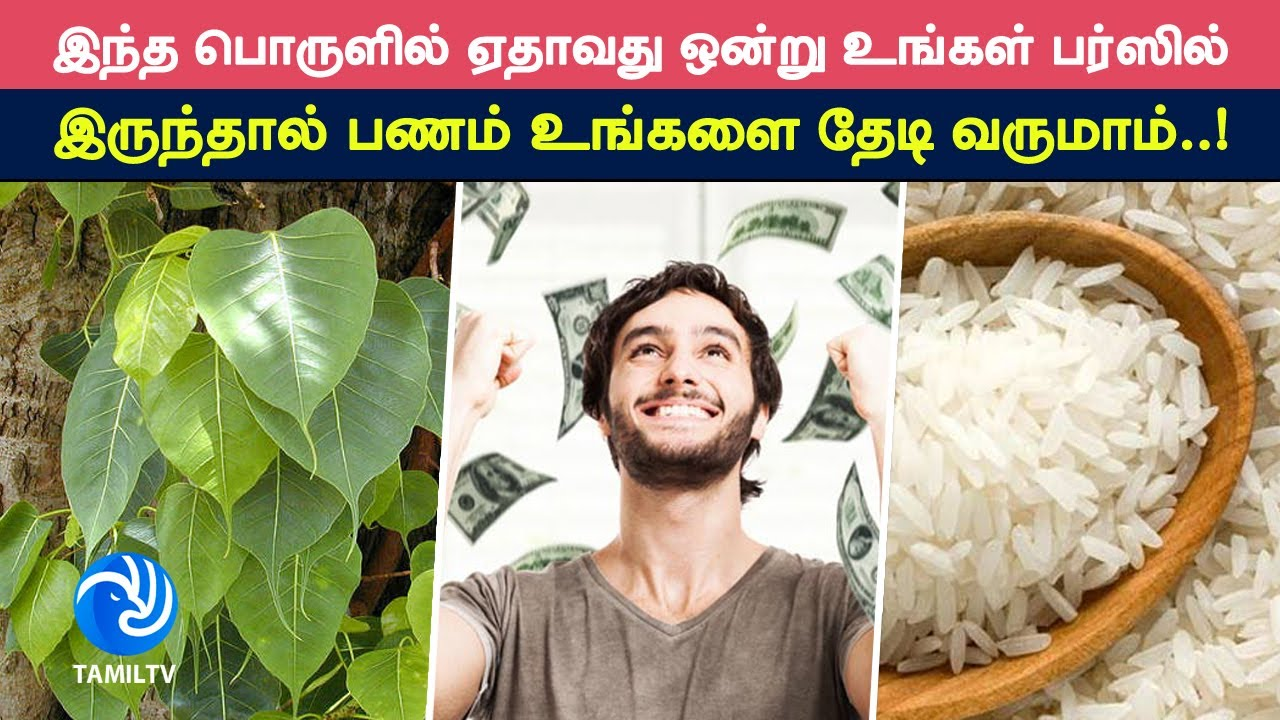 Things to Keep in Wallet to Attract Money - Tamil TV