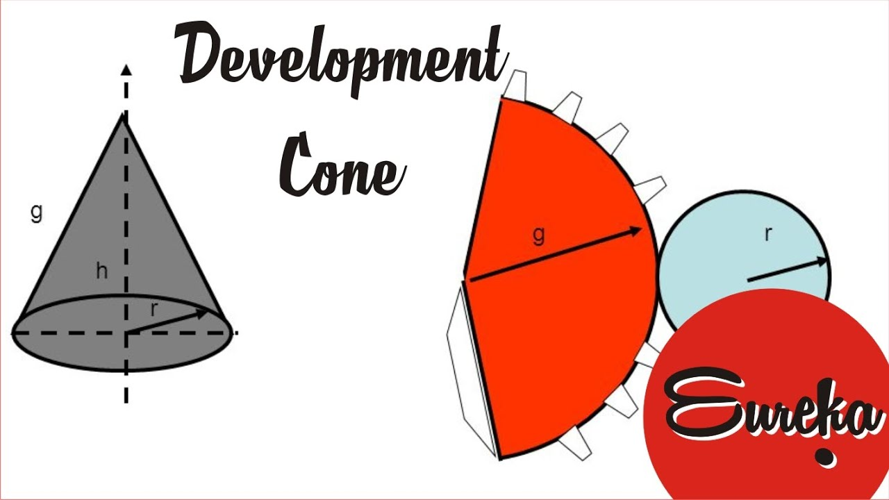 Drawing tutorial │Development of a cone - YouTube