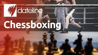 The Bizarre Sport of Chessboxing