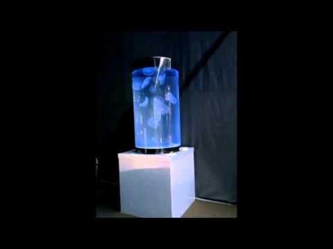 Aquarium pour méduses Biome Création Cylindre  50