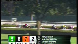 Picture Book - 2012 Saratoga Maiden Claiming Race - Fifth Place Finish