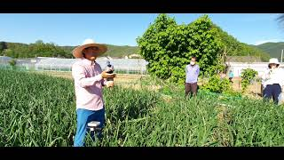 화천군 농업기술센터 영…
